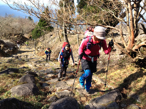奉幣殿から中岳への登山道