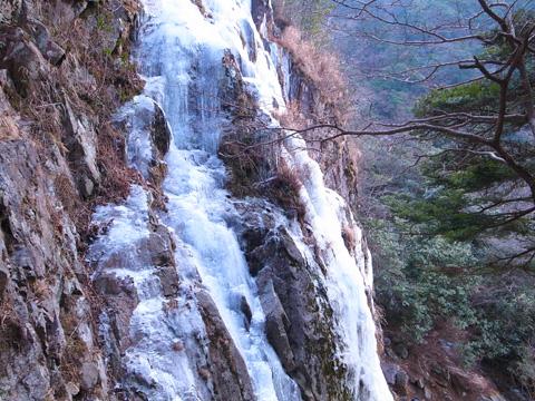難所ヶ滝を北側の斜面より望む
